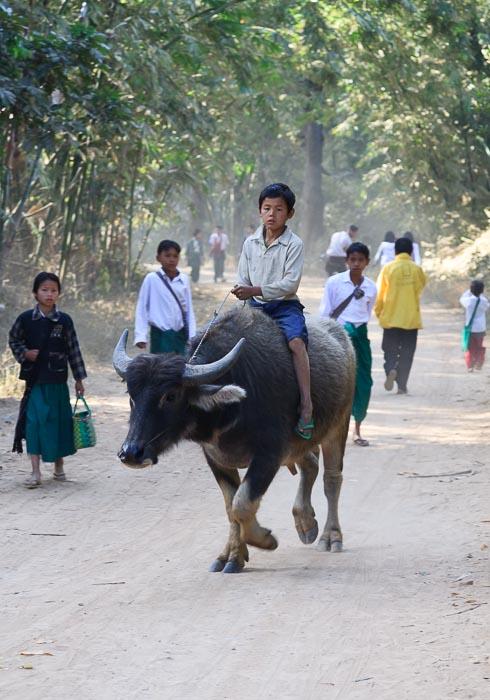 Stefano-Paterna-Myanmar-Inle See-5