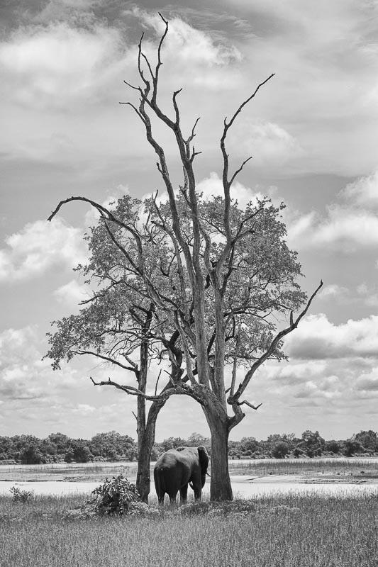 Fotoreise Sambia Malawi