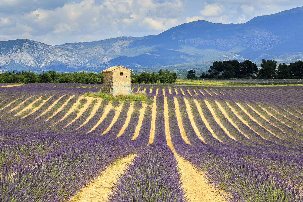 fotoreise-provence-stefano-paterna