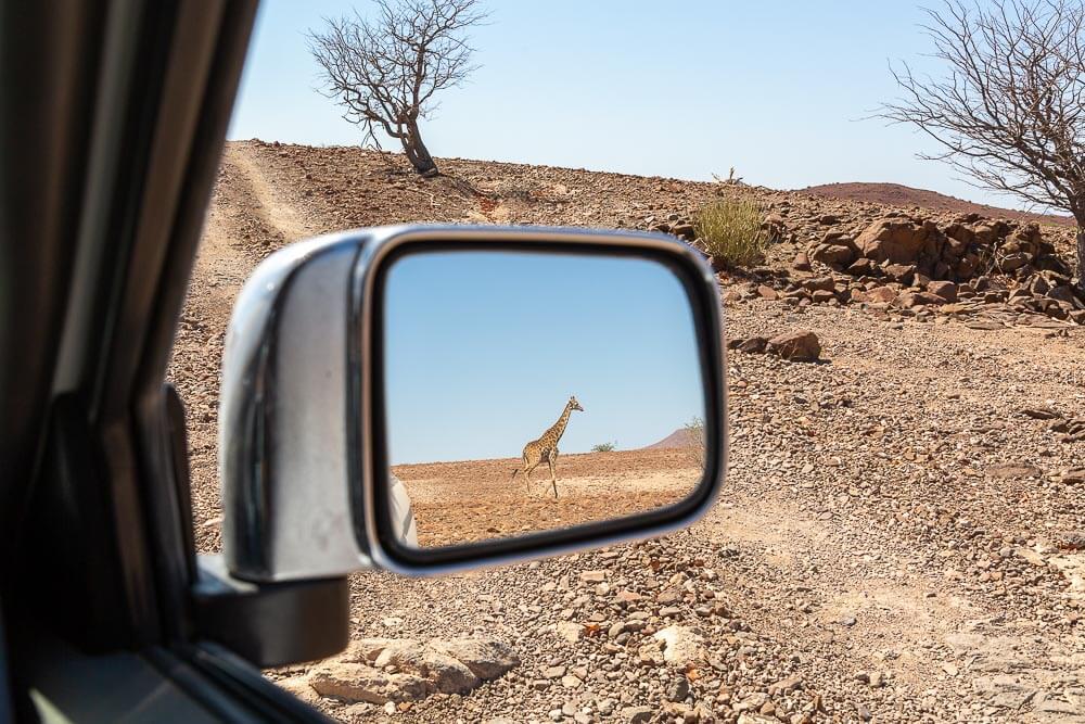 fotoreise_namibia_stefano_paterna
